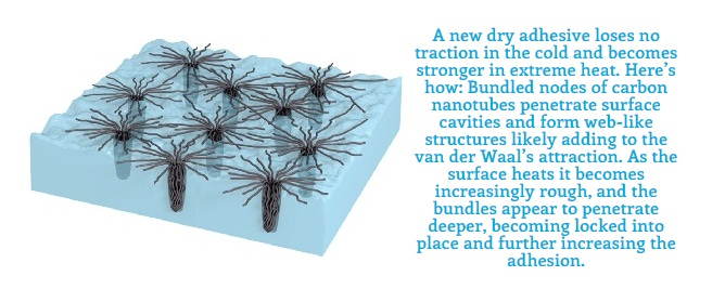 Carbon Nanotube Dry Adhesive for Extreme Cold & High-temperatures