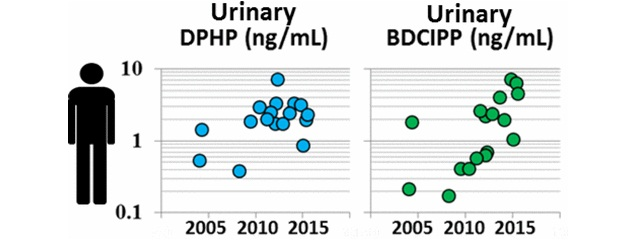 Data suggest that BDCIPP concentrations have increased dramatically since 2002. Samples collected in 2014 and 2015 had BDCIPP concentrations that were more than 15 times higher than those collected in 2002 and 2003