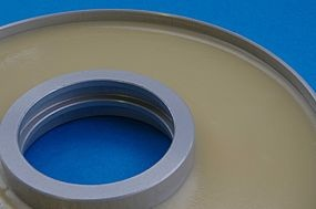 Shear-thinning Adhesive