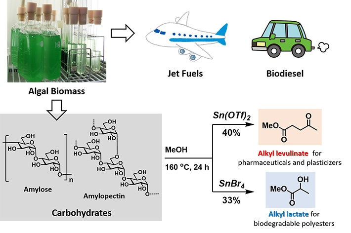 Method to Convert Algal Residue in Industrial Chemicals