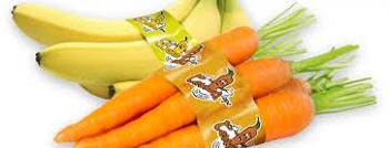 Irplast开发接触食品应用的新型胶带
