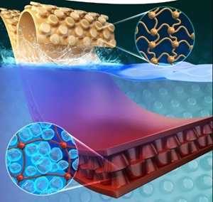 韓國研究人員開發出具有優異韌性的新型水下膠粘劑